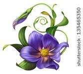 african violet tattoo designs - Google Search