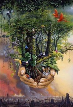 Let your Kingdom come on EARTH as it is in heaven. Jehovah promises a Paradise earth to come & God cannot lie Mother Earth, Mother Nature, New Earth, Flat Earth, Environmental Art, Surreal Art, Tree Of Life, Amazing Art, Fantasy Art