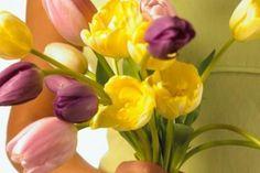 Tulipanes decoupage CREAR Comò SUSPENDIDA transparente