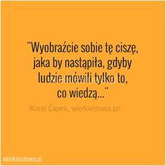 Wyobraźcie sobie tę ciszę... #Capek-Karel,  #Człowiek, #Mądrość-i-wiedza, #Sarkazm-i-ironia