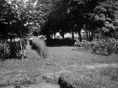 1930 - Horto Municipal do Guabirotuba Fonte: Relatorio e Inventario da Comissão Avaliadora. Acervo: Arquivo Público Municipal. s.n.t.