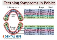 Teething is the Process in which the milk teeth starts to erupt. It usually starts at an age of six months when the first lower anterior tooth erupts. Extra parental care is needed during teething.