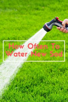 Caring for brand new sod is important if you want to preserve the greenish look. Knowing how often to water new sod is essential for proper care. Lawn Sod, Sod Grass, Lawn Turf, Diy Garden Projects, Outdoor Projects, Garden Ideas, Outdoor Ideas, Outdoor Decor, Gardening For Beginners