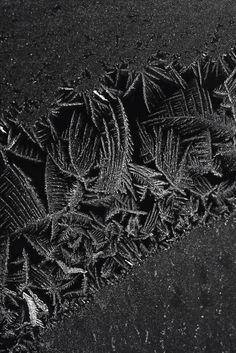 Black   黒   Kuro   Nero   Noir   Preto   Ebony   Sable   Onyx   Charcoal   Obsidian   Jet   Raven   Color   Texture   Pattern   Jessica Rosenkrantz