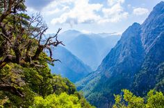 The Samaria Gorge is the most famous of Crete and during the summer it is crossed daily by 3,000 hikers.