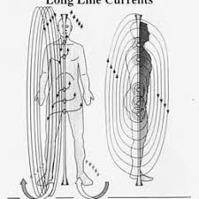 Image result for transverse currents polarity therapy