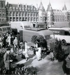 Le marché aux fleurs de l'Île de la Cité, avec vue sur la Conciergerie, vers 1955.