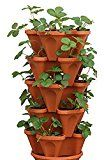 5 Tiered Hanging and Stacking Vertical Strawberry Planter Pot - Learn How to Grow Organic Strawberries Easy with these Cool indoor outdoor Terracotta Plastic Containers - Great Garden Planting Pots Kit - Planters Also Used For Pepper Herbs Flower Tomato S