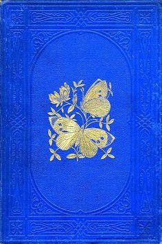 Moris's British Butterflies - Rev F Moris 1870 Book Cover Art, Book Cover Design, Book Design, Book Art, Victorian Books, Antique Books, Vintage Book Covers, Vintage Books, Modelos 3d
