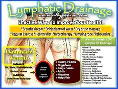 Think of the lymphatic system as your body's garbage disposal. When it is not working correctly, it is similar to when . Diet And Nutrition, Health Diet, Getting Rid Of Phlegm, Lymphatic Drainage Massage, Massage Benefits, Health Benefits, Lymphatic System, Dry Brushing, Regular Exercise
