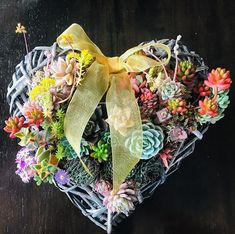Just missing my succulent heart Took more than six months for these sunkissed succulents to become established in this heart-shaped rattan frame. Bird Cage, Terrarium, Rattan, Repurposed, Upcycle, Eco Friendly, Succulents, Floral Wreath, House Design