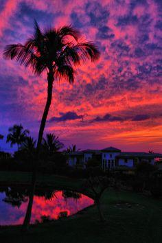 Purple Sunset, Maui
