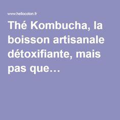 Thé Kombucha, la boisson artisanale détoxifiante, mais pas que…
