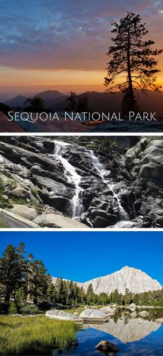 The Ultimate Guide to Sequoia National Park
