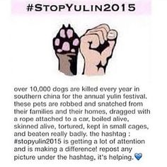 #StopYuLin2015 http://www.change.org/p/president-of-the-people-s-republic-of-china-stop-the-yulin-dog-meat-eating-festival sign the petition
