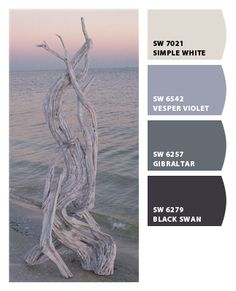 Driftwood - Paint colors from Chip It! by Sherwin-Williams
