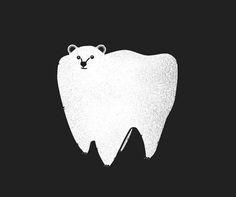 molar bear