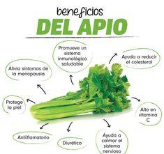 Celery and its benefits de dietas especiales Healthy Juices, Health And Nutrition, Health Tips, Health Fitness, Natural Medicine, Herbal Medicine, Herbal Remedies, Natural Remedies, Herbs For Health