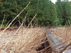 Walking the railroad tracks