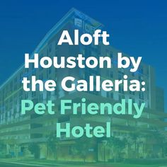 Aloft Houston by the Galleria: One of the best Pet Friendly Hotels in Houston, Texas. Aloft Houston has among the best pet policies around. Called the ARF (Animals R Household) program, one pet weighing around 40 pounds can remain in your room without a pet charge. Your pet friend enjoys his very own water bowl, pet bed, as well as a bag of dog toys and also treats from the hotel while there.   #alofthouston #houston #texas #hosutontexas #hotel #restaurant #luxuryhotel #traveltips…