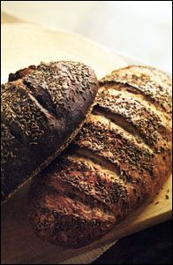 pumpernickel date and walnut bread ------- 1 pound (grapefruit size portion) Pumpernickel Bread dough (See Pumpernickel Recipe) 1/4 cup chopped walnuts  1/4 cup chopped dates or raisins Cornmeal for the pizza peel  Cornstarch wash