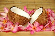 Plumeria and Coconut...