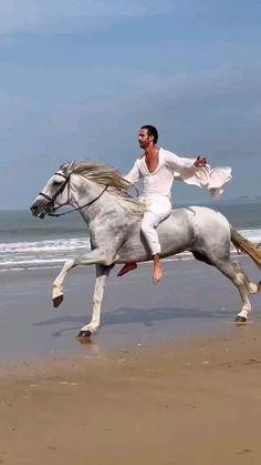 Beautiful Nature Scenes, Horses, Cute, Videos, Animales, Kawaii, Horse