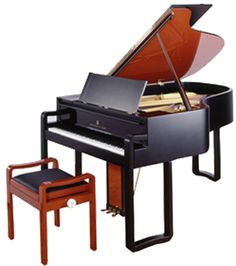 the steinway S.L.ED by karl lagerfeld limited edition piano. sigh