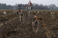 #Hunt Please repin!