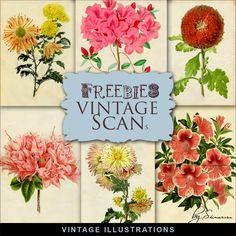 Far Far Hill - Free database of digital illustrations and papers: New Freebies Kit of Vintage Illustrations
