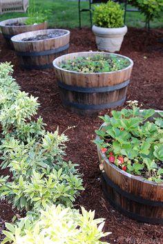 Strawberry Barrel Garden - The Inspired Room