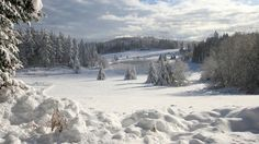 Winter-Landscape-1920x1080
