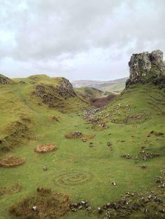 Fairy rings, Scotland Highlands