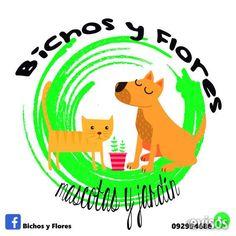 Alimento para mascotas  Alimentos para perros y gatos Las mejores marcas del mercado al mejor precio! Artículos de ...  http://buceo.evisos.com.uy/alimento-para-mascotas-id-302343
