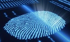 Now that edge-to-edge displays are commonplace on smartphones, the new holy grail for mobile engineering is the creation of the under-display fingerprint sensor. Not under glass — that's easy — but. Iphone 5s, New Iphone, Wall Street Journal, Samsung Galaxy S5, Fingerprint Technology, Types Of Crimes, Homeless Services, Biometric Security, Knowledge Management