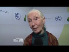 Jane Goodall on the Threat of Animal Agriculture, GOP Climate Change Denial & Why She's a Vegetarian - YouTube