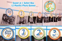 Sweet Safari Photo banner boy - Picture banner 1st Birthday Party Jungle Birthday Safari Birthday  Jungle party Safari Birthday - Printable