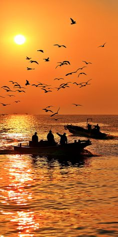 Fishing in Korea by Jihoon Hwang #sunset #orange