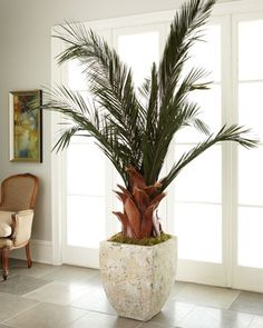 Oversized Palm in Planter at Neiman Marcus.