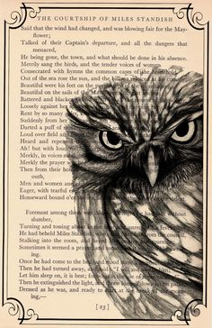 Winter Sale 10% off Owl Dictionary page book art print by PRRINT