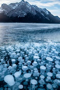 Places To Travel, Places To See, Frozen Bubbles, Banff Canada, Alberta Canada, Banff National Park, Nature Images, Canada Travel, Amazing Nature