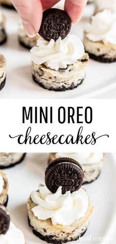 Cookies and cream cheesecake makes for a rich craveable dessert that is oh-so-simple to make cheesecake cheesecakerecipes oreos oreocheesecake oreocake baking bakingrecipes minidesserts desserts recipes iheartnaptime Mini Desserts, Delicious Desserts, Baking Desserts, Yummy Dessert Recipes, Recipes For Desserts, Dessert Healthy, Birthday Desserts, Easter Desserts, Desserts To Make