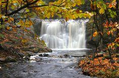 fall slow shutter photography <3