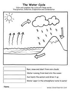 Trendy Science Worksheets For Kids Water Cycle Water Cycle Chart, Water Cycle Song, Water Cycle Poster, Water Cycle For Kids, Water Cycle Model, Water Cycle Project, First Grade Worksheets, Science Worksheets, Science Lessons