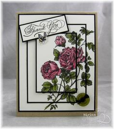 English Rose by mlnapier - Cards and Paper Crafts at Splitcoaststampers