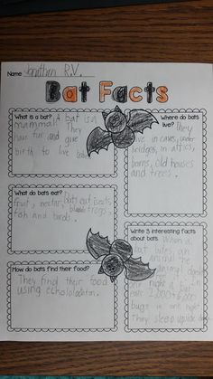 Smiling and Shining in Second Grade: All About Bats- Free Graphic Organizer