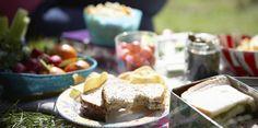 Food safety at outdoor picnics