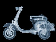 X-Ray Photo by Nick Veasy  ❤Photog [◎°] Xray❤