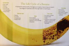The life cycle of a banana. Fine Cooking