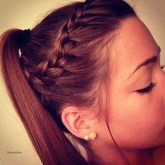 Little Braid + PonyTail